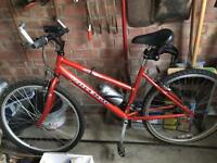 Ladies Raleigh Bike for sale
