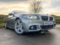 BMW 520d M SPORT - EfficientDynamics - AUTOMATIC - DIESEL - 2013/63