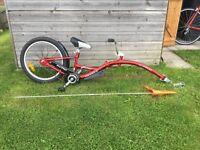 WeeRide Trailer bike