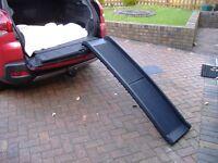 Dog car ramp.