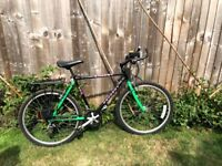 Peugeot Energy 300 mountain bike, free lights and rear carrier
