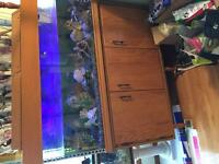 75 gal ciclid fish tank with fish 300 obo