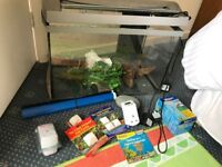fish tank, accessories and plants etc to get started