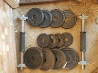 Cast Iron 20kg Dumbell plate set (2 available)