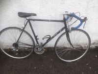Dawes Audax Giro. Men's road bike. Fully serviced, fully safe and ready to go.