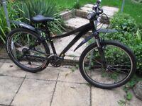 Specialized ladies mountain bike