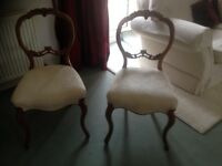 Pair of pretty antique light wood ornate carved balloon back chairs .