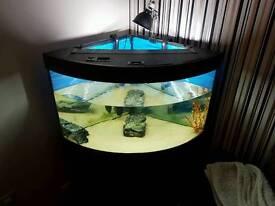 Jewel 190 Corner Aquarium