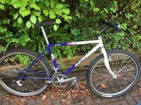 Specialized rockhopper or hardrock mountain bike