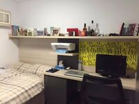 Cambridge Student Accommodation- Sizable Rooms, Modern Facilities and Prime Location!