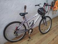 Gents and Ladies mountain bikes