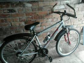 Opollo xc26 bike