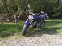 2 owners 15k miles years MOT £1950 Honda 600 hornet ltd edition colour great bike to ride