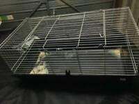 Indoor Rabbit Hutch
