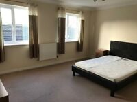 Large furnished double room available immediately in popular location. All bills included.