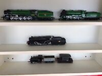 Model Trains 00 Static for Layout Sidings