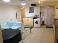 Streatham Central, London, SW16 Large Studio/1 Bedroom Basement Flat