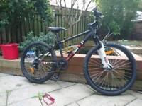 Boys' Mountain Bike / Trail Bike