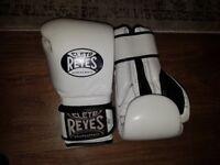 Reyes 18oz boxing gloves