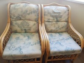 Arm chairs or conservatory chairs (three)