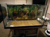 2.5 ft fish / hamster/ lizard / turtle tank