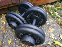 Commercial fixed cast iron dumbbells 2 x 22.5 kg