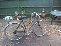Raleigh Richmond ladies 5 speed bike road bike with rear rack and a stand