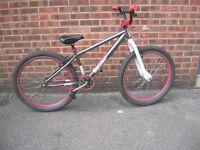 X Rated mesh dirt jump bike