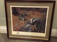 Limited Edition Badger Print