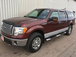2010 Ford F-150 LARGE 4X4 V8 PICK-UP WITH INCREDIBLE PERFORMA...
