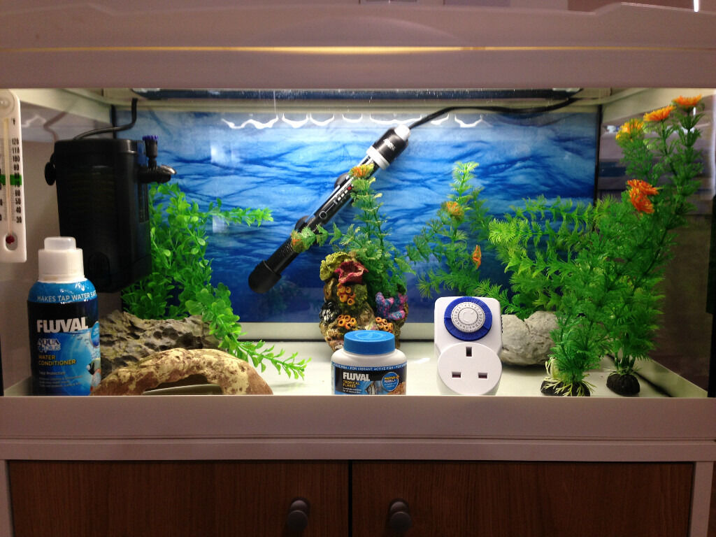 Freshwater fish tank equipment - Marina Premium 54 Aquarium With All Fish Tank Equipment Eg Heater Filter Accessories Etc In Plymouth Devon Gumtree