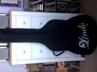 Purple Acoustic Guitar