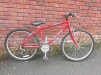 Raleigh Firelfly 16 inch frame mountain bike