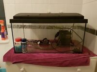 Fish tank with extras 2ft just add gravel, water and fish