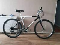 Palomaa gt bike