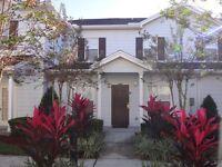 Florida townhouse to rent - Lucaya Village Resort, Kissimmee, Florida