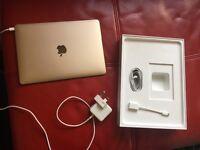 "12"" MacBook Gold colour"