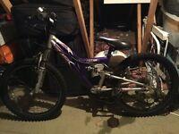 Apollo Awesome Kids Mountain Bike 20inch wheels