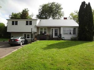 428 Montgomery-4 Bed, 2 Bath,Utilities Inc, May 1st