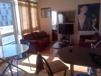 Large Bright Twin Room for 2 Friends Available