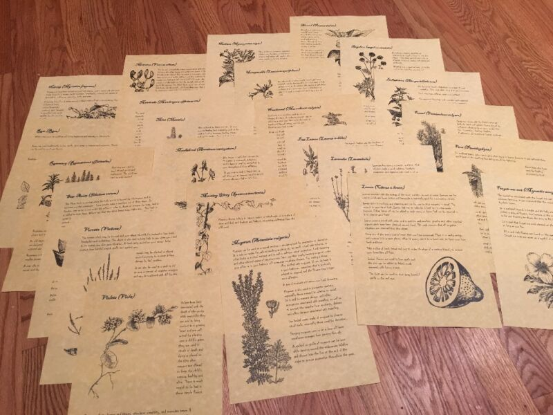 Book of Shadows Pages - 2 dozen herbs for Witchcraft