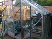 8x6 glass greenhouse