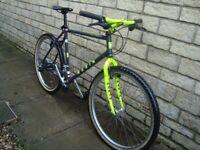 MARIN adult mountain bike for sale 26 inch wheel
