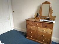 Double bedroom to rent from end of June until 31st July