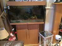 VERY ATTRACTIVE FISH TANK WITH UNDERNEATH CUPBOARD COMES WITH EVERYTHING IN IT.