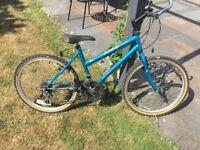 Appollo Excel 3500 15 inch frame - women's bike