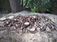 Firewood, free for collection.