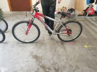 Boys 24 inch mountain bike