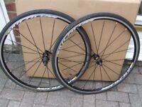Mavic Aksium Elite wheelset with Gatorskin tyres.