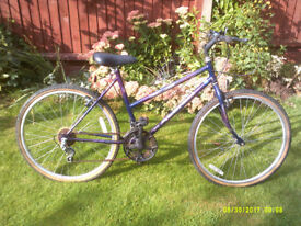 RALEIGH ENIGMA MOUNTAIN BIKE ONE OF MANY QUALITY BICYCLES FOR SALE